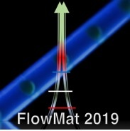 "Flow Synthesis of Multi-Scale Materials ""FLOWMAT 2019"""
