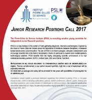 Junior Research Positions Call 2017